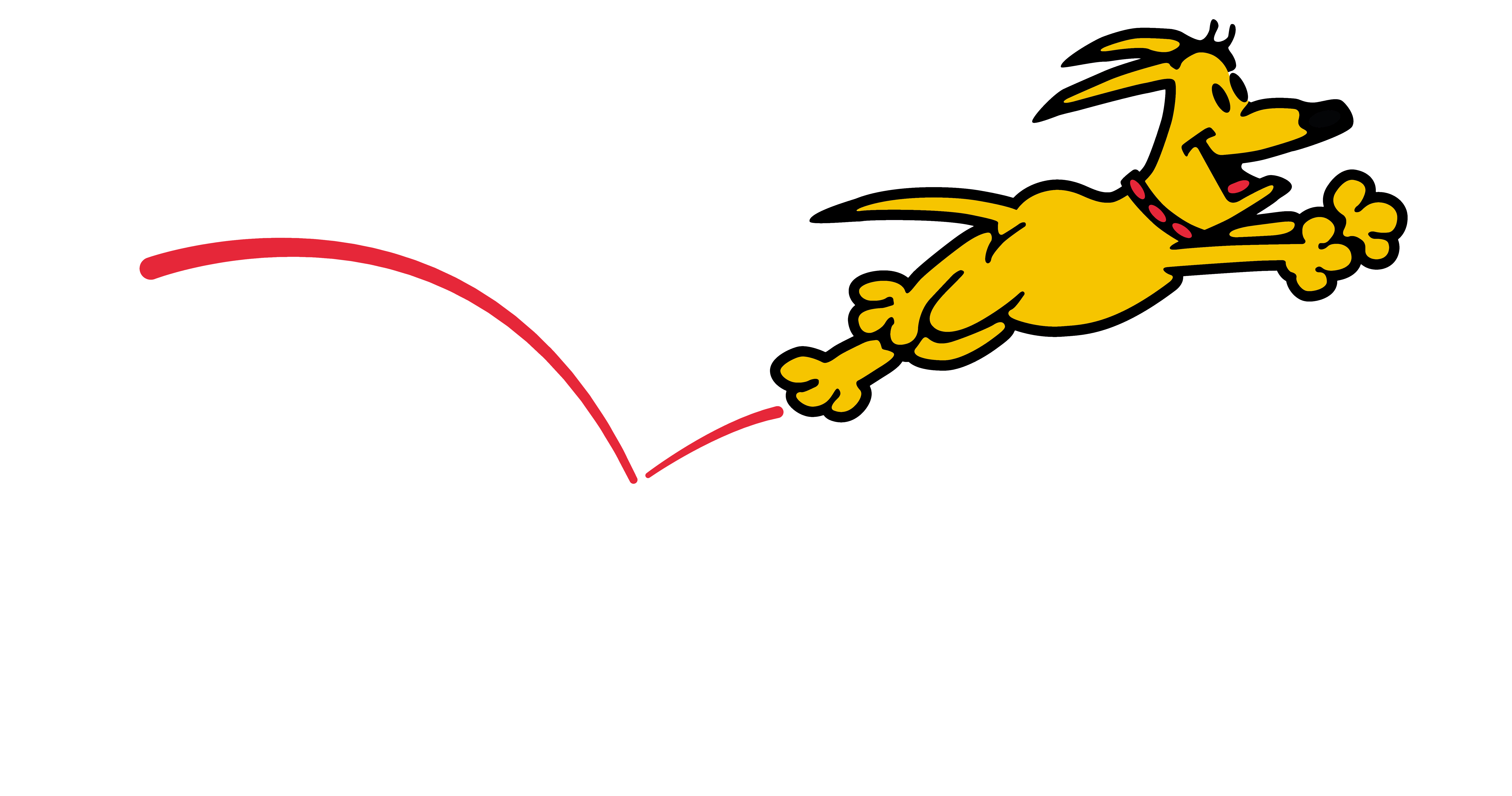 DDA Logo White Letter